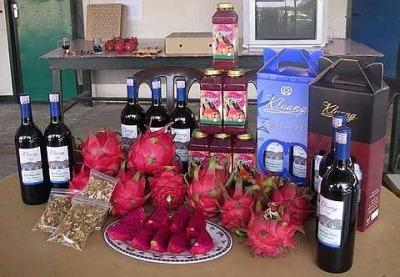 fruit center dragon fruit wine