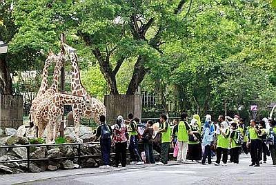 العروض السياحية الاقتصادية في ماليزيا 2016 (شركة فريد شوقي)