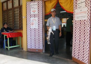 An EC official removing a stray cat which wandered into a polling centre at Sekolah Sains Sultan Haji Ahmad Shah in Pekan.